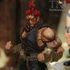 2011 NYCC - New Play Arts Kai Arkham Asylum & Street Fighter Figures