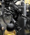 2013 NYCC - DST Alien Minimates, Van Helsing & More