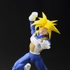 S.H. Figuarts DBZ Super Saiyan Trunks Figure Images
