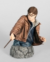 Harry Potter Deathly Hallows Mini Bust From Gentle Giant