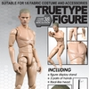 TTM18 - 1/6th scale TrueType Body - Caucasian Male (Narrow Shoulder Ver.)
