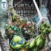 IDW To Publish Second Teenage Mutant Ninja Turtles Ongoing Series