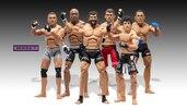 JAKKS UFC Wave 7 Deluxe Figures