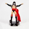 WWE Entrance Greats Finn Bálor & Target Exclusive Hall of Champions 2 Figure Images