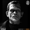One: 12 Collective Universal Monsters: Frankenstein Images & Info