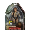 NECA 2014 SDCC Exclusive �Fire and Stone� Ahab Predator Packaged Figure Image