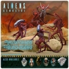 Special Aliens Genocide Concept Figure 2-Pack Coming From NECA