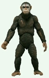 NECA Dawn Of The Planet Of The Apes Caesar Figure