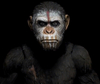 NECA Dawn Of The Planet Of The Apes Figure Sneak Peek