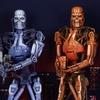Toys R Us Exclusive Robocop vs Terminator Endoskeleton 2-Pack