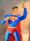 TNI Spotlight: DC Universe 12� Superman Figure