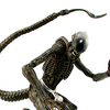 NECA Toys Alien 3 Dog Alien Figure Video Review & Images