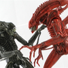 NECA Aliens Genocide Xenomorph Warrior Figures 2-Pack Video Review & Images