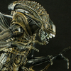 NECA Aliens Xenomorph Warrior Figure Video Review & Images
