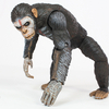 Dawn of the Planet of the Apes Caesar Figure Video Review & Images
