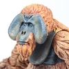 Dawn of the Planet of the Apes Maurice Figure Video Review & Images