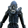 NECA Aliens Series 2 Xenomorph Warrior Figure Video Review & Images