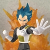 S.H. Figuarts DBZ Super Saiyan Vegeta Figure Video Review & Images