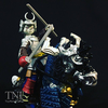 TMNT Samurai Usagi Yojimbo With Warrior Horse Video Review & Image Gallery