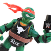 TMNT WWE Raphael as The Rock Ninja Superstars Turtles Figure Video Review & Image Gallery