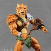 ThunderCats Classic Jackalman Figure Video Review & Images
