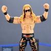 Mattel WWE Elite