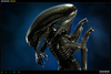 "Alien ""Big Chap"" Maquette Photo Gallery From Sideshow"