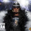 1/6 Scale Hollywood Hulk Hogan Figure From Storm Collectibles