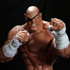 Pop Culture Shock Collectibles Announces SAGAT Street Fighter Statue