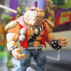 More TMNT Classics Bebop & Rocksteady Plus A Video Tour Of The Playmates Showroom