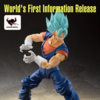 Tamashii Nations Dragonball North American Tour Exclusive S.H. Figuarts Super Saiyan God SS Vegito Figure