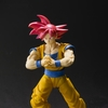 S.H. Figuarts Dragon Ball Z  Super Saiyan God Son Goku Figure Images & Info