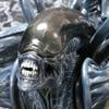 AVP: Alien Vs. Predator ARTFX Statue - Grid Alien