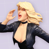 Women Of The DC Universe: Black Canary Bust