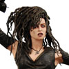 NECA Releases First Image of Bellatrix Lestrange from Harry Potter OOTP Series 3