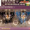 Transformers Skywarp & Thundercracker Robotmasters Special